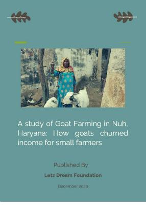 Knowledge-Hub-Goat-Farming-in-Haryana